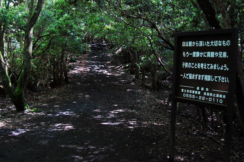 Aokigahara-pathway