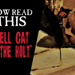 Now Read This: Hell Cat of the Holt