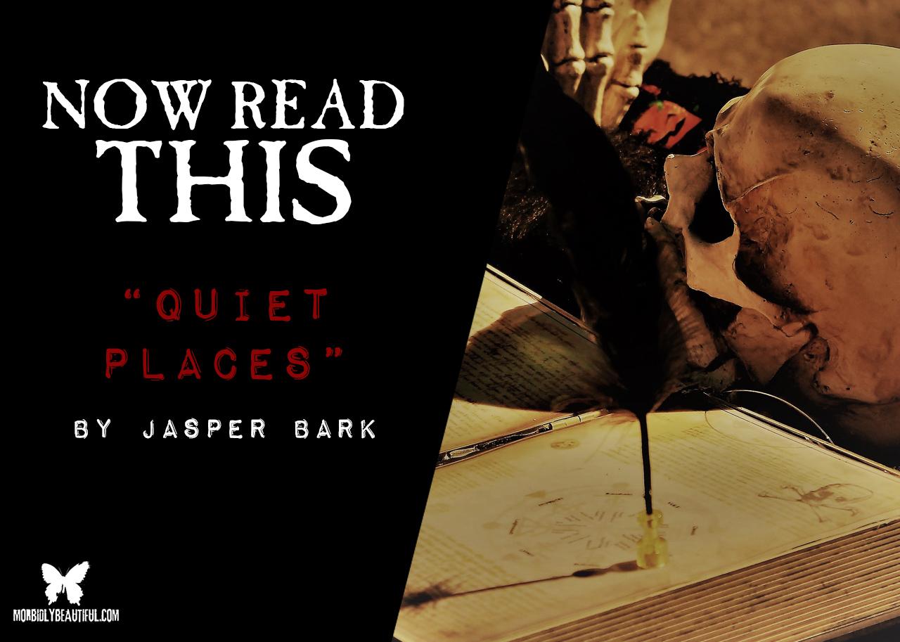 Quiet Places Review