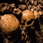 The Importance of Horror Archaeology