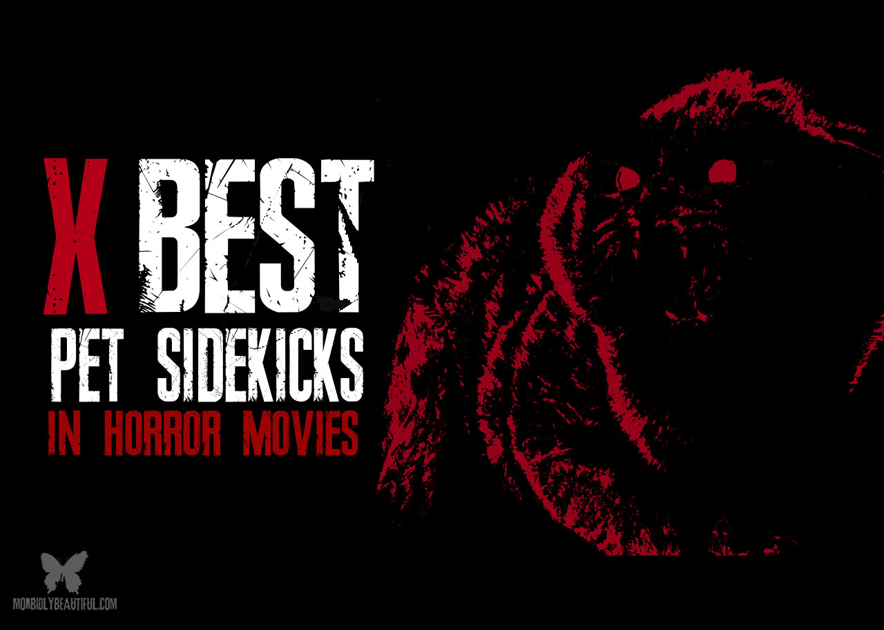 Pet Sidekicks