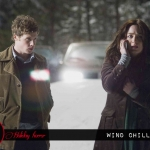 Holiday Horror: Wind Chill (2007)