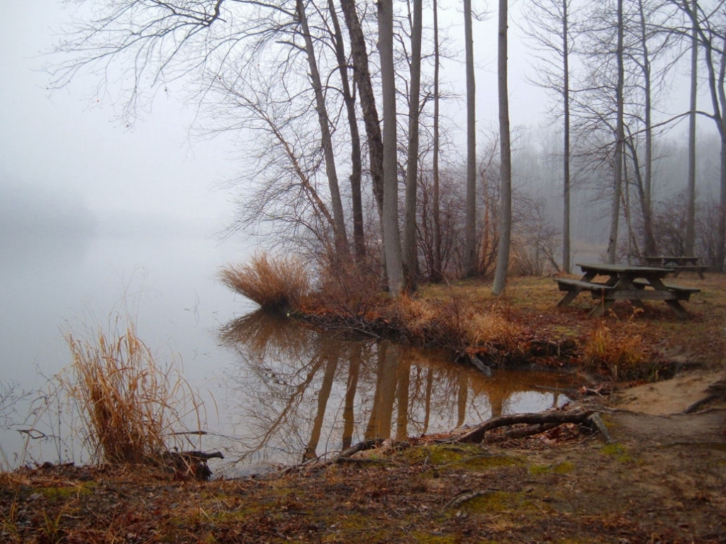 Lums Pond