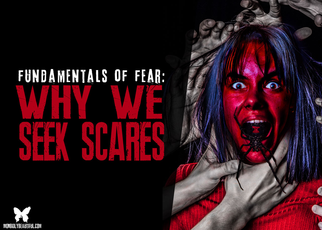 fundamentals of fear