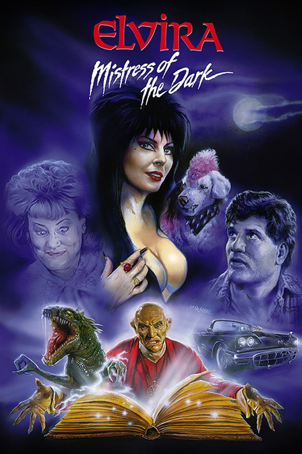 "Poster for the movie ""Elvira, Mistress of the Dark"""
