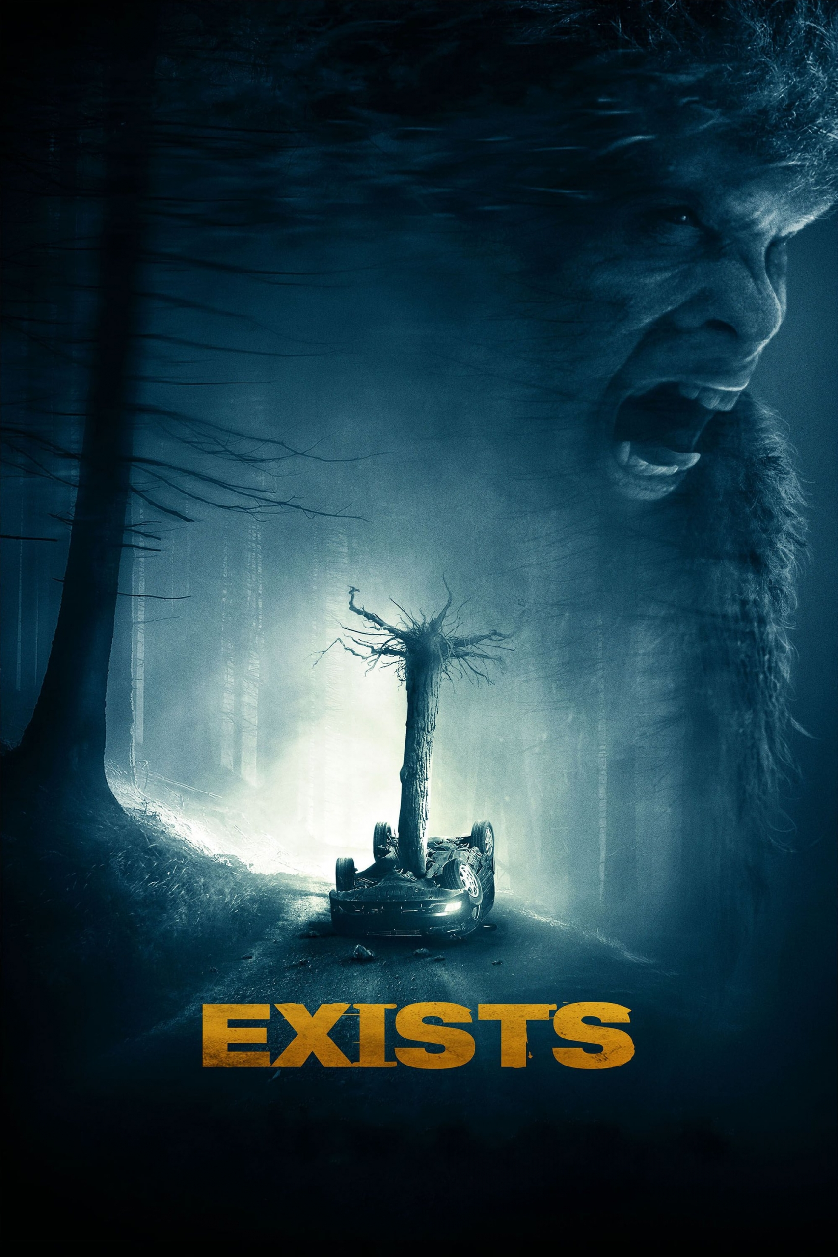 "Poster for the movie ""Exists"""