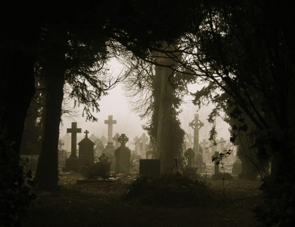 Foggy-Graves-Through-Trees