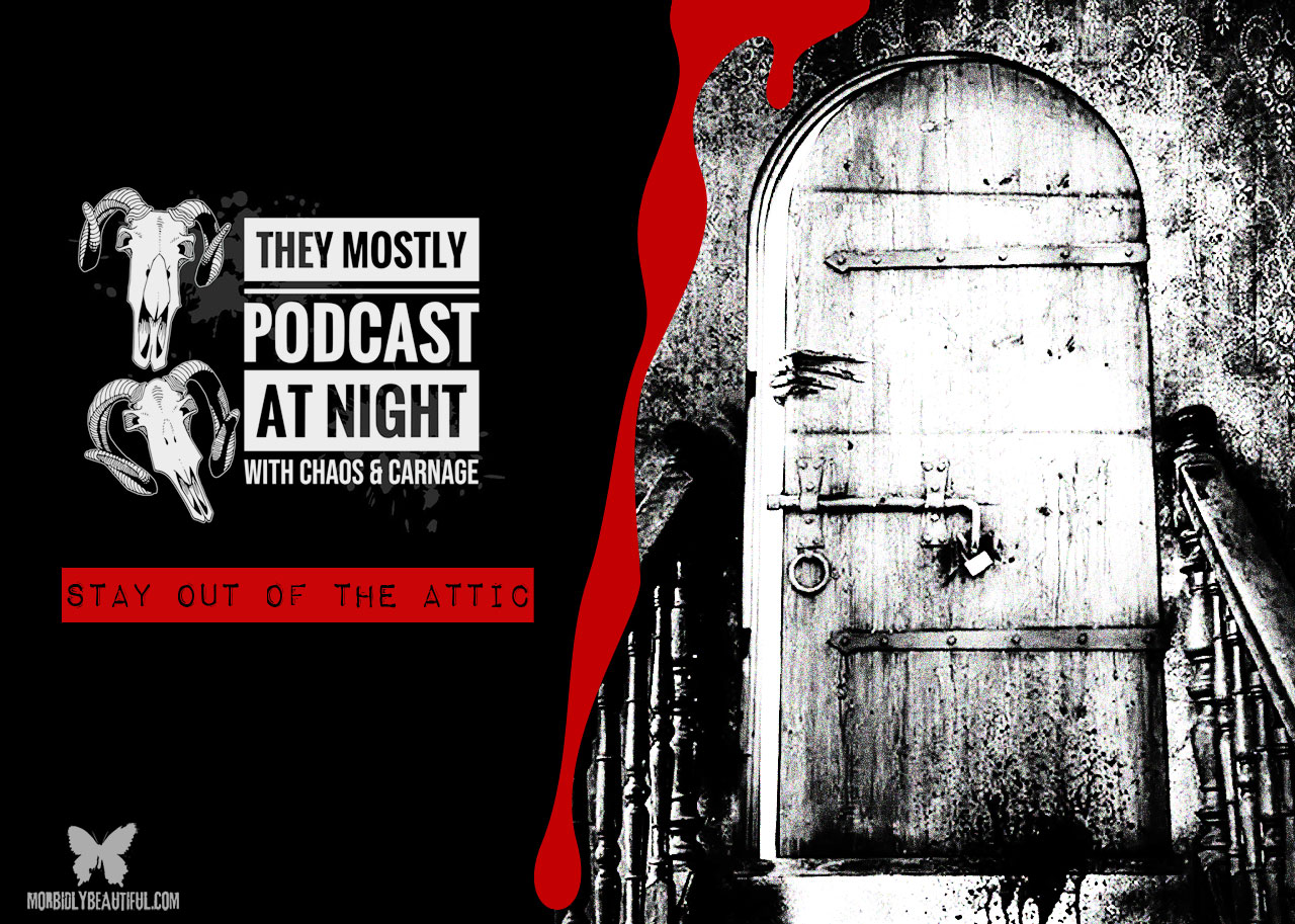 They Mostly Podcast at Night