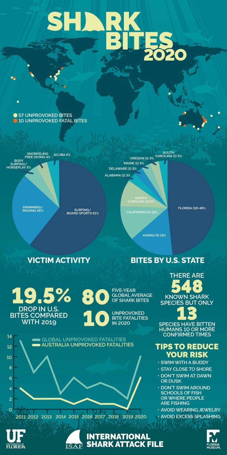 shark-attack-data