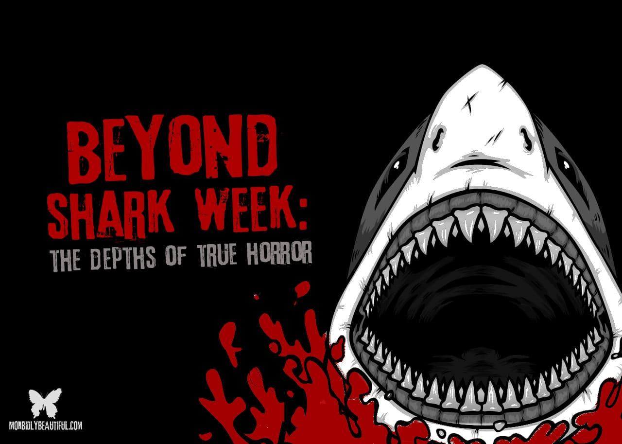 Beyond Shark Week